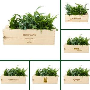 BloomsBox Duurzaam Relatiegeschenk